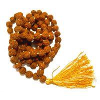 Mala 108 Grani di Rudraksha